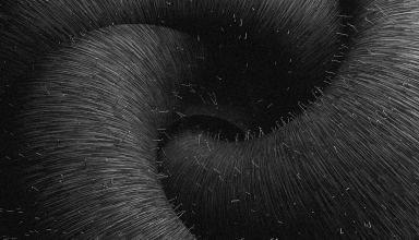 The Place |  Danil Rusanov